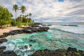 pic of pacific islands  - Paradise on tropical island in the South Pacific - JPG