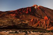 pic of canary  - El Teide National Park - JPG