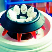 stock photo of centrifuge  - PCR tubes in centrifuge - JPG