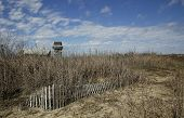 picture of gulf mexico  - small wooden fence for protecting turtle eggs on beach off of the Gulf of Mexico in Grand Isle - JPG