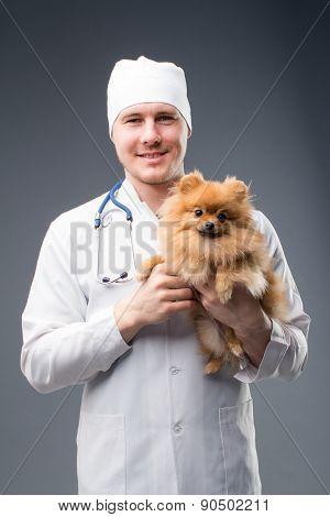 Smiling Male Vet With Phonendoscope Holding Cute Pomeranian Dog