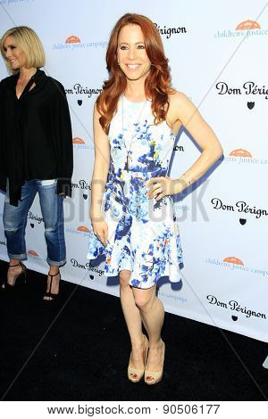 LOS ANGELES - MAY 12:  Amy Davidson at the Children's Justice Campaign Event at the Private Residence on May 12, 2015 in Beverly Hills, CA