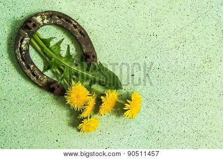 Old Horseshoe And Dandelions