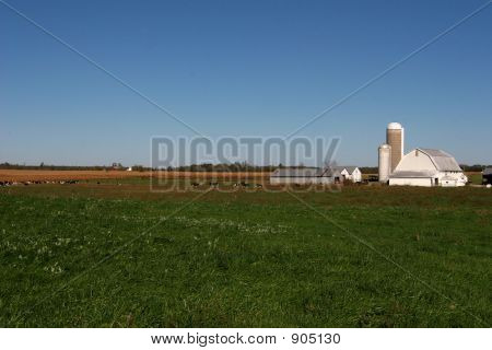 Indiana Dairy Farm