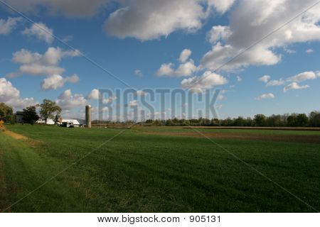 Indiana Dairy Farm 2