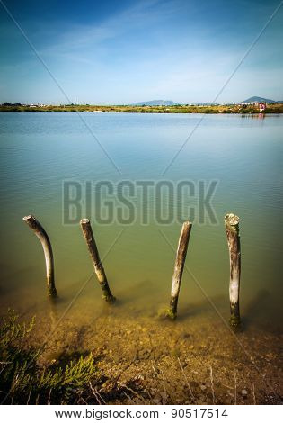 Beautiful countryside landscape with a lake and wooden poles