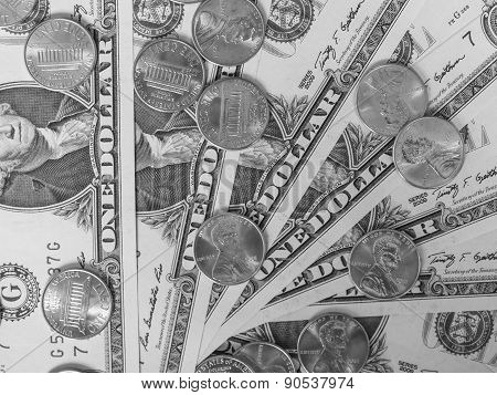 Dollar Coins And Notes