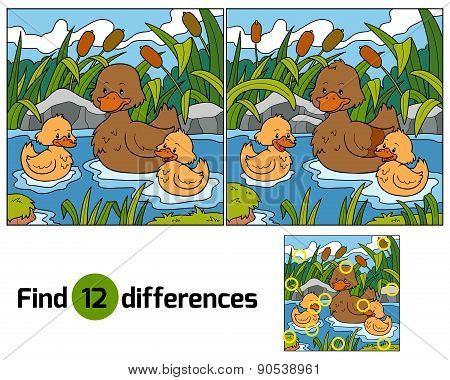 Find Differences (duck)