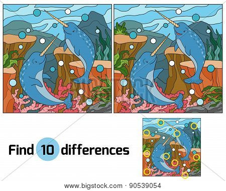 Find Differences (narwhal)