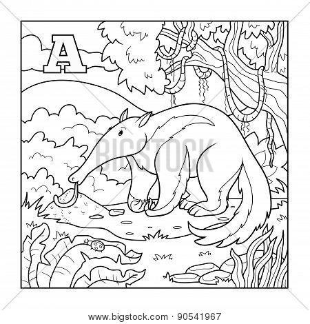 Coloring Book (anteater), Colorless Illustration (letter A)