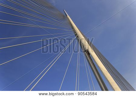 Ada bridge in Belgrade