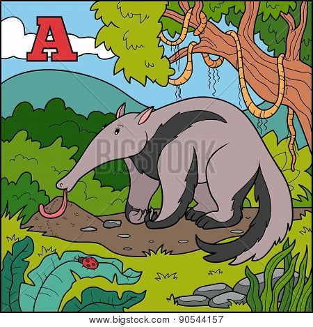 Color Alphabet For Children: Letter A (anteater)