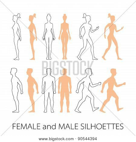 Male Female Silhouettes Front, Back And Side. Vector Illustration
