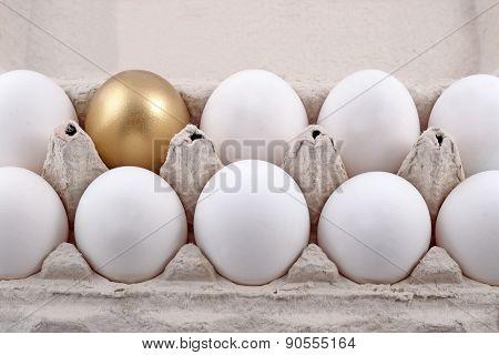 Golden Egg And Jast Eggs