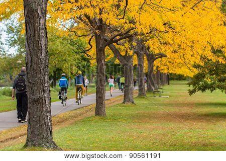 Boston In Autumn, Usa