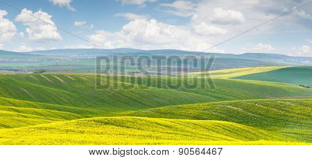 Panoramic background of colorful yellow-green hills with blue sky and clouds - big size