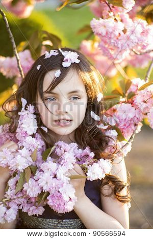 Little Girl Amid Cherry Blossom