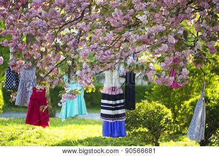 Child's Dresses On The Tree