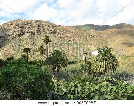 The valley of Vega de Rio Palmas on Fuerteventura