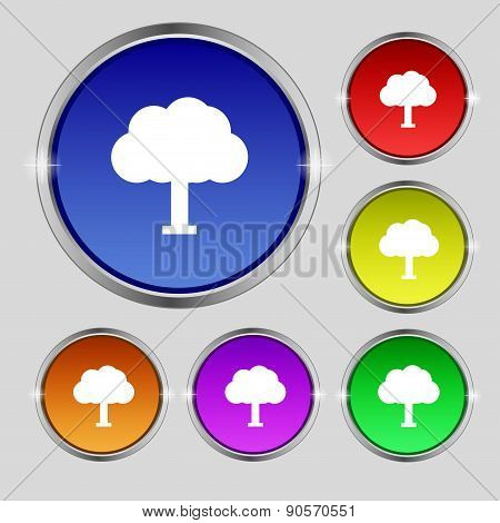 Tree, Forest Icon Sign. Round Symbol On Bright Colourful Buttons. Vector