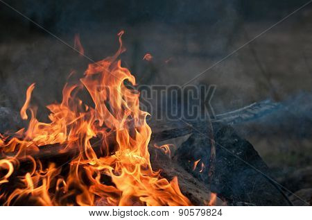 Planks Burning In Bonfire