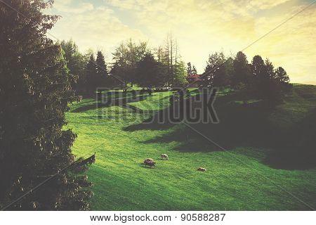 Vaduz Farm
