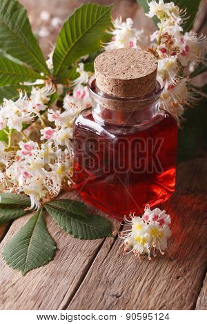 The Extract Of The Flowers Of Chestnut. Closeup Vertical