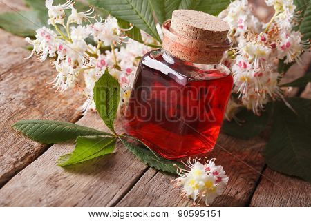 Medical Tincture Of Flowers Chestnut In A Bottle Horizontal
