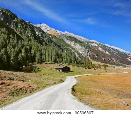 Sunny autumn day. Wide dirt road in an Alpine valley. The mountain slopes are covered with dense pine forest