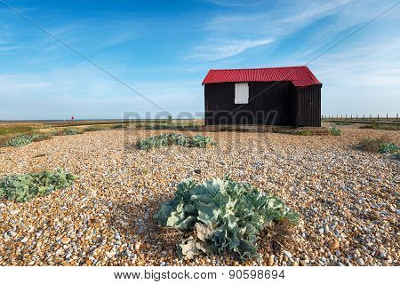 The Red Hut At Rye
