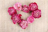 picture of sackcloth  - Heart of beautiful dry flowers on sackcloth background - JPG
