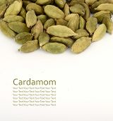image of cardamom  - Close up of Cardamom pods on white background  - JPG