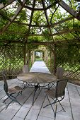picture of pergola  - Wooden pergola and rose garden in the countryside - JPG