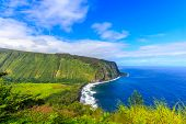 picture of pacific islands  - The view from Waipi - JPG