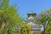 stock photo of castle  - Himeji Castle is traditional japanese castle in Osaka Japan - JPG