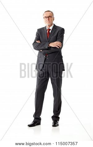 Respectable Senior Businnes Man, Standing