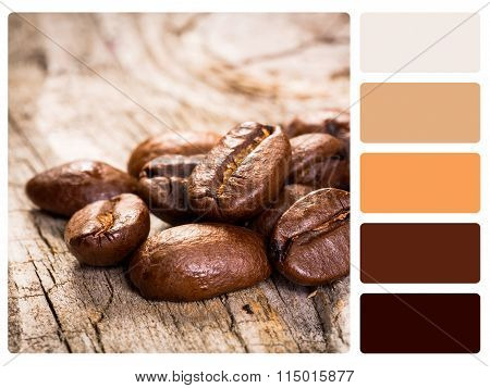 Colour Palette Swatch