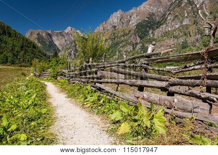 Path pasing a wooden fence.