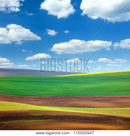 Amazing Abstract Colorful Fields and Sky Background - beautiful nature landscape, idillyc waves of hills, wallpaper