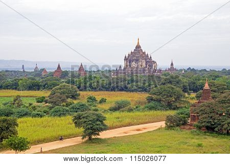 Many ancient pagodas in the landscape from Bagan in Myanmar