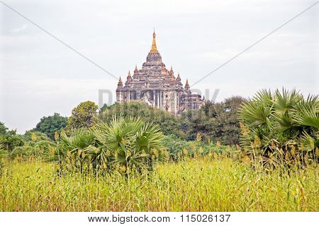 Ancient pagoda in burmese landscape in Bagan