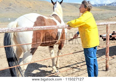 Female bonding with horse.