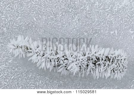 Ice crystals forming on a piece of wood and the surface of frozen water in the morning during winter time