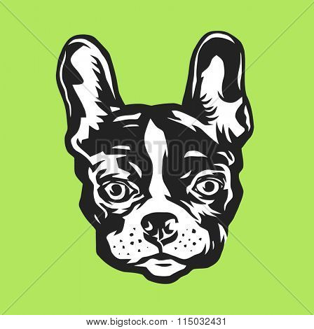 French bulldog portrait. Vector illustration.