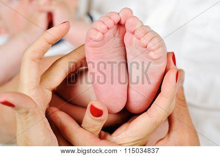 Baby's Foot In Mother Hands