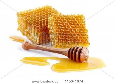 Honeycombs with wooden spoon