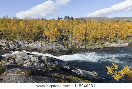 A waterfall in a short river up North. Colorful autumn, fall leaves in the taiga forest.