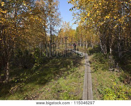 LAPLAND, SWEDEN ON SEPTEMBER 13