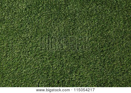 Perfect lawn with green grass view from above