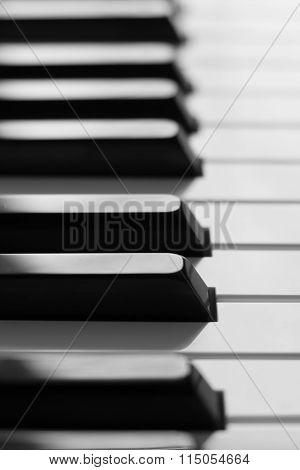 Piano Keys Monochrome